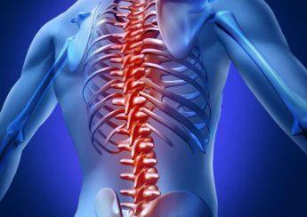 đau cột sống lưng